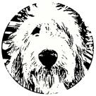 VERTERE_logo のコピー