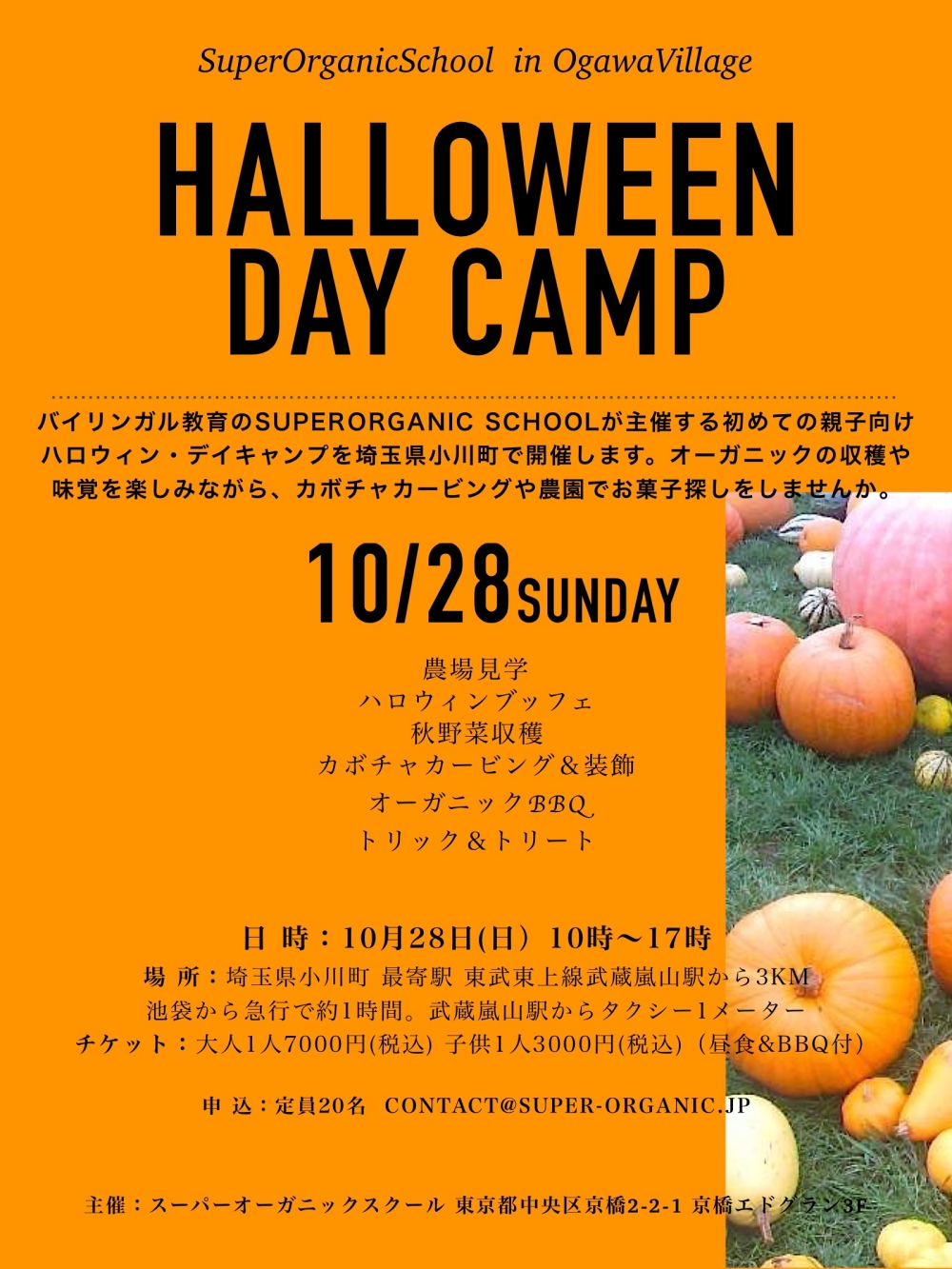 halloweendaycamp